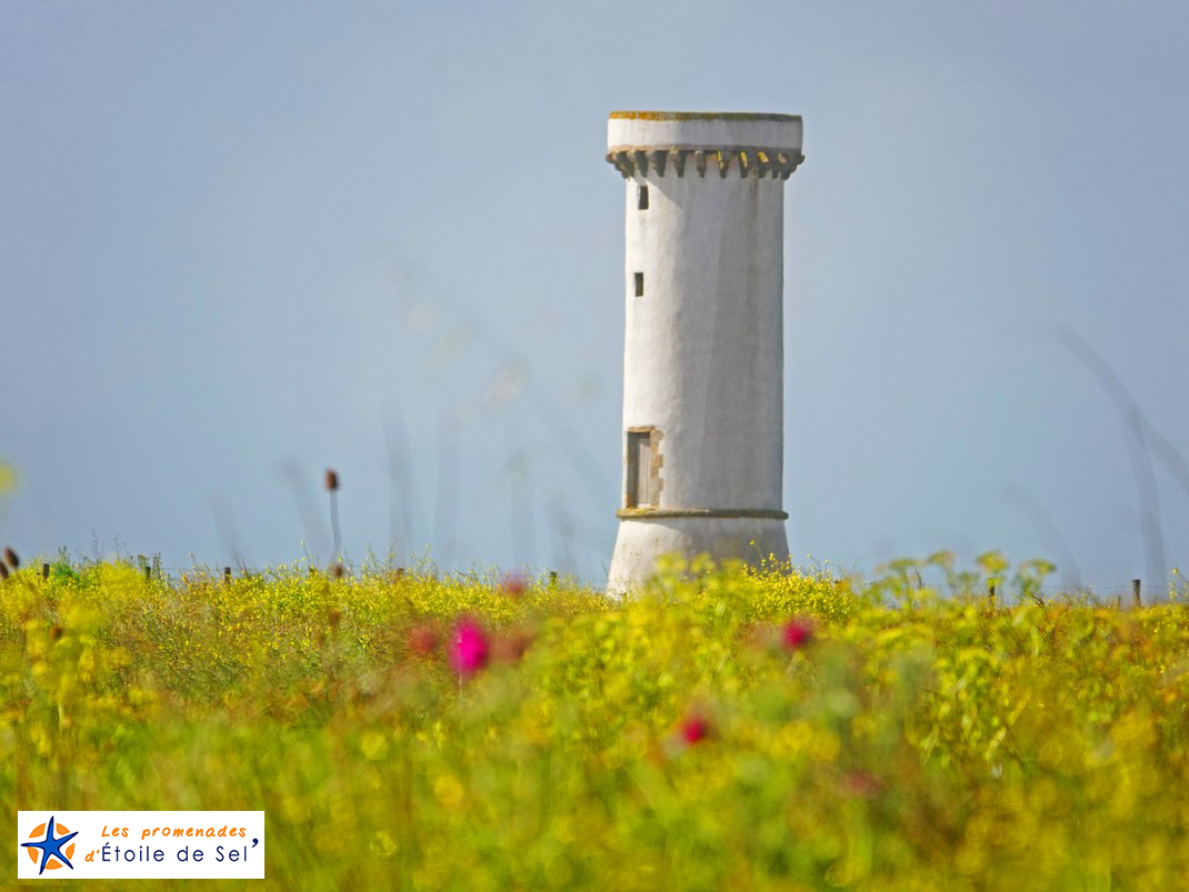 La Tour des Anglais à Penerf en damgan Morbihan